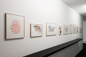 abstract_vide grenier_marie boucheteil_023